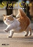 STREET CATS -のらねこ。写真集- 画像