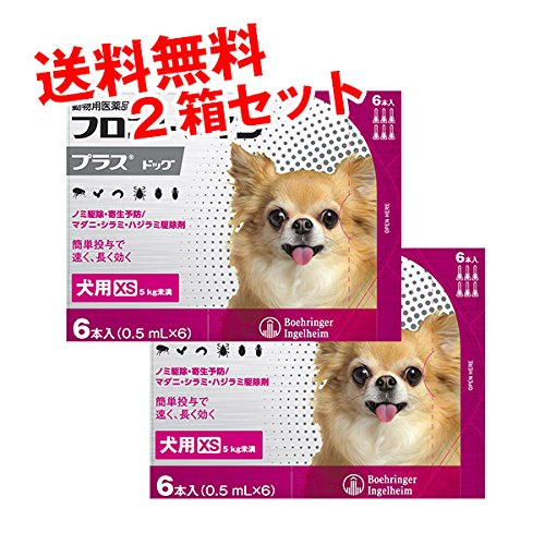 フロントラインプラス犬用 XS(5kg未満) 6本入 2箱セ...