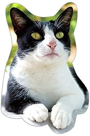 kmag 猫マグネット 南国の黒白ねこ