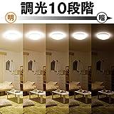アイリスオーヤマ LED シーリングライト 調光 タイプ ~8畳 CL8D-5.0