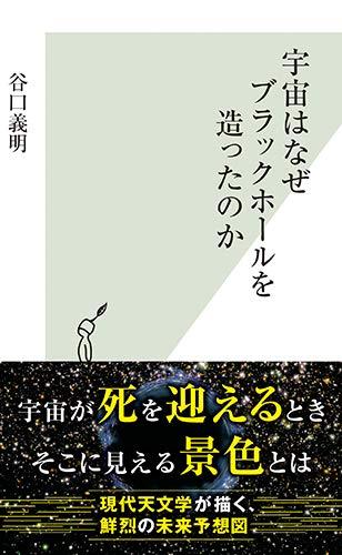 宇宙はなぜブラックホールを造ったのか (光文社新書)の詳細を見る