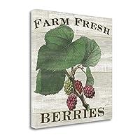""""""" Farm Fresh Raspberries """" byスーシェルバッハ、アートジークレーギャラリーラップキャンバスの印刷、ハングする準備"""
