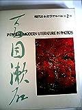 現代日本文学アルバム〈2〉夏目漱石 (1974年)
