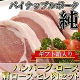 パイナップルポーク 純 特撰ギフト カネマサミート 沖縄産ブランド豚のハンバーグ・ロース・肩ロース・ヒレ肉セット