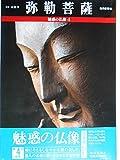 弥勒菩薩 (魅惑の仏像 4)