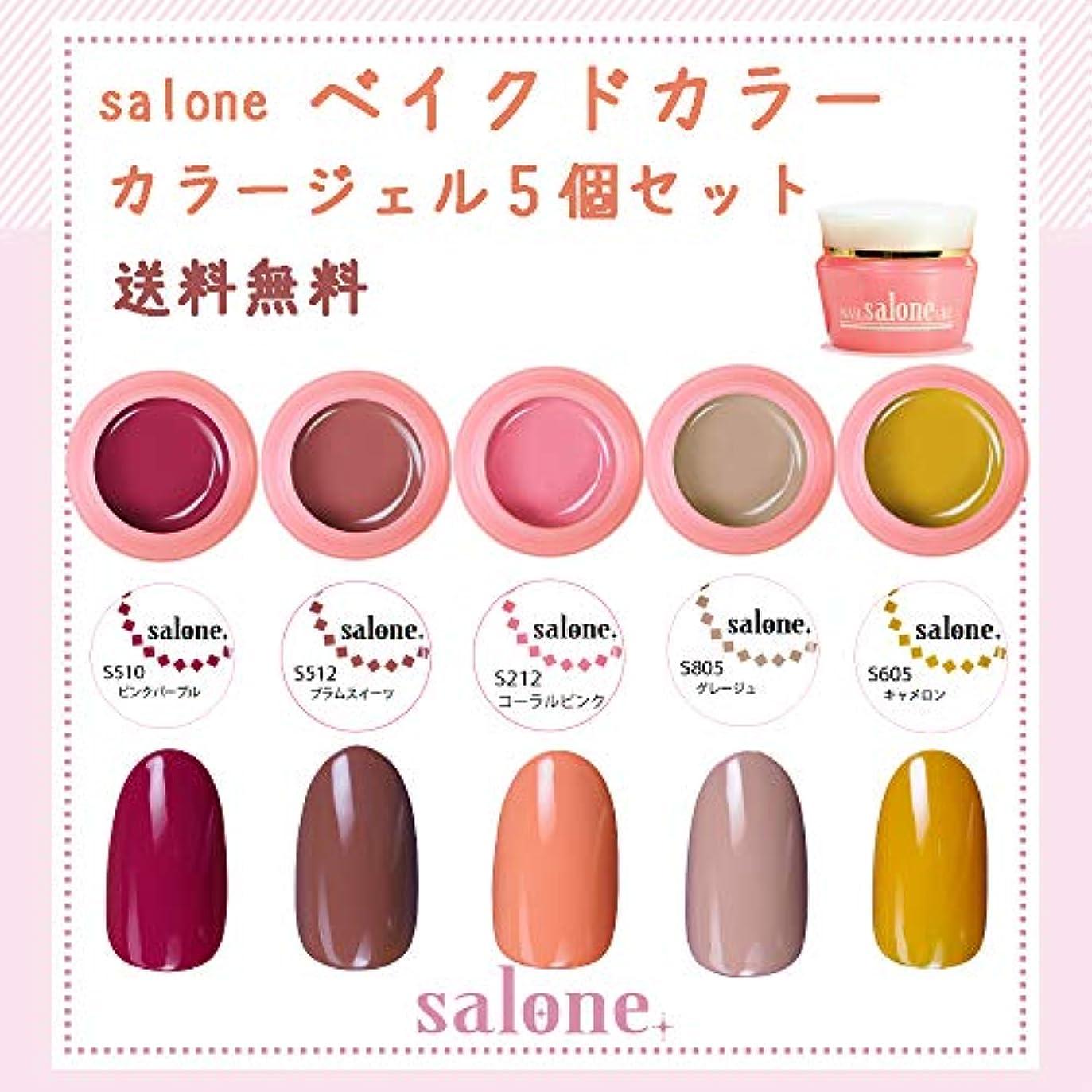 チャームスピン洞察力のある【送料無料 日本製】Salone ベイクドカラージェル5個セット 大人っぽく暖かく大人可愛いトレンドカラー