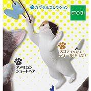 アメショJUMP!猫ジャンプ [2.スコティッシュフォールド(三毛)](単品)