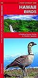 Hawaii Birds: A Folding Pocket Guide to Familiar Species (A Pocket Naturalist Guide) 画像