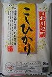 【精米】埼玉県北川辺産 白米 こしひかり 5kg 平成29年産
