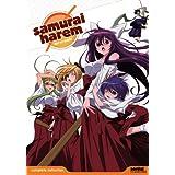 Samurai Harem: Complete Collection [DVD] [Import]