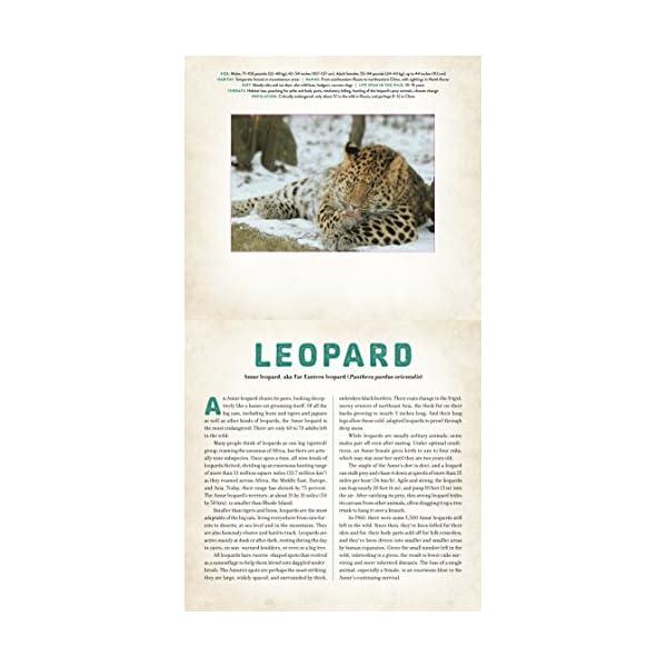 Wild: Endangered Animal...の紹介画像2