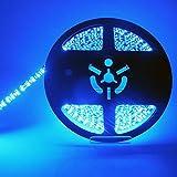 SatisLight 製品 LEDテープ5m 12V用 300SMD & 600SMD  選べる6色 ベース色は2タイプ(白&黒) (600SMD(黒ベース), ブルー)