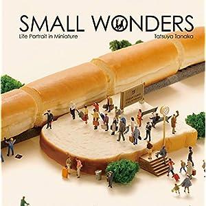 Small Wonders: Life Portrait in Miniature