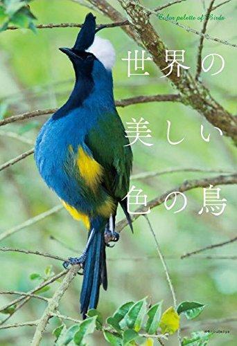 世界の美しい色の鳥の詳細を見る