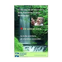 CafePress–spanish- Nature 's Secret : GiveのみThe Breast–ミニポスター印刷