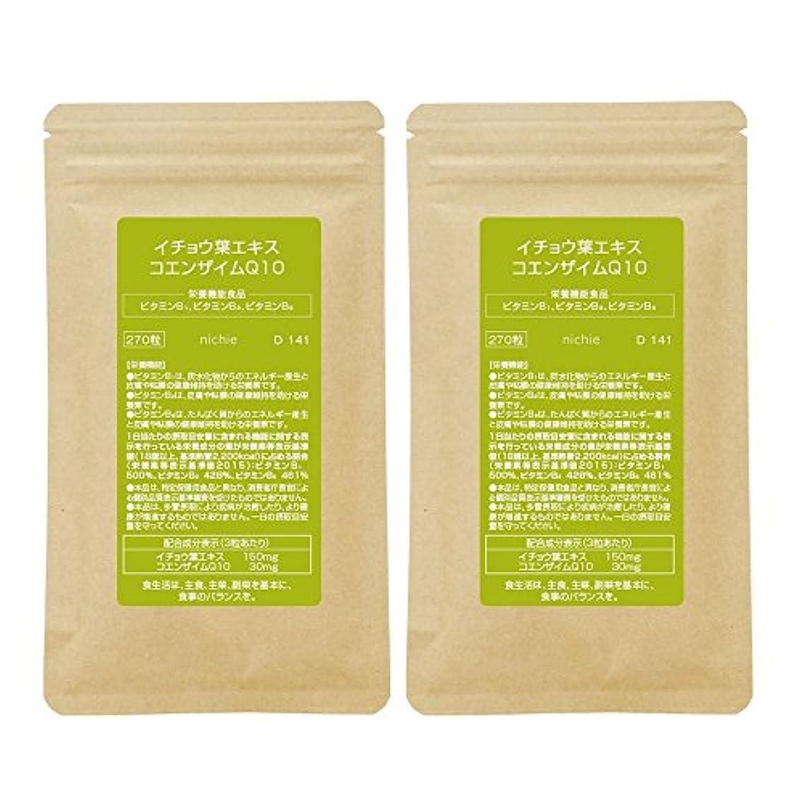忘れっぽいアジテーション規則性nichie イチョウ葉エキス コエンザイムQ10 ビタミン 複合型サプリメント 約6ヶ月分(270粒×2袋)