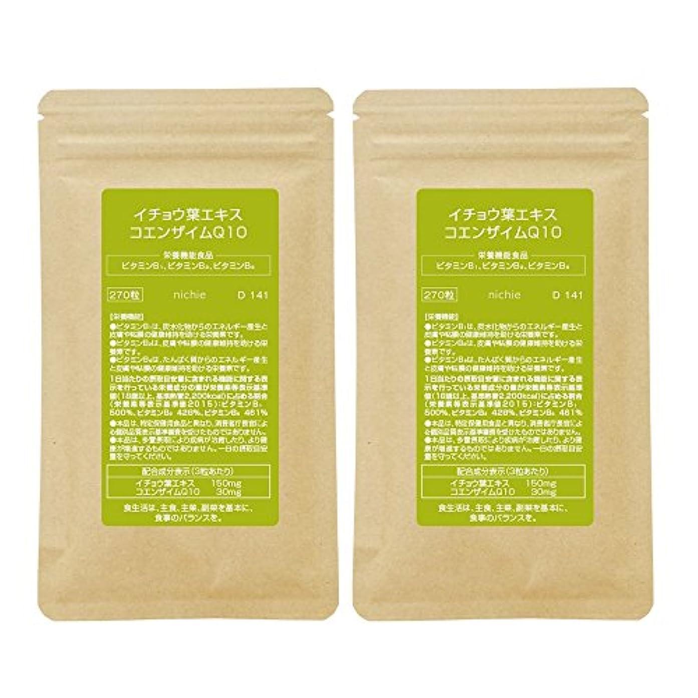 話をする無秩序一瞬nichie イチョウ葉エキス コエンザイムQ10 ビタミン 複合型サプリメント 約6ヶ月分(270粒×2袋)