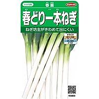 サカタのタネ 実咲野菜3802 春どり一本ねぎ 春扇 00923802