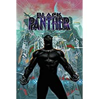 Black Panther Book 6 (Black Panther by Ta-Nehisi Coates (2018))