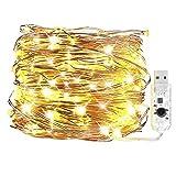 Bidason LEDジュエリーライト 10m100球 常時点灯 7種類の点滅パターン USB給電式 イルミネーションライト 中庭・パーティー・木・祭りに飾り 防水 装飾 結婚式 パーティー 飾り ライト 正月 クリスマス 飾り バレンタインデー 電飾 ウォームホワイト