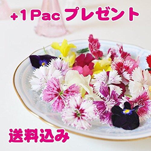 食べるお花 〜MIX 無農薬バラエティフラワー~