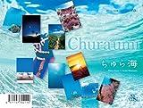 2012うみまーる卓上カレンダー'ちゅら海'
