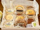プリン シュークリーム ロールケーキ チョコ チーズケーキ 半生 ケーキ いろいろセット (ギフト 中サイズ)