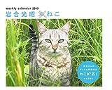 カレンダー2019 岩合光昭ねこ