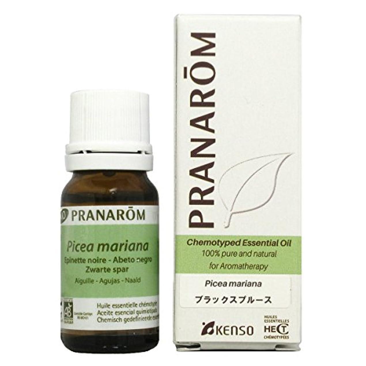 おっとバイオレット性的プラナロム ブラックスプルース 10ml (PRANAROM ケモタイプ精油)