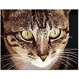 Yyboo Diy絵画By数字デジタルキャンバス油絵ギフト大人子供キットホームデコレーター - Civet Cat (フレームなし)