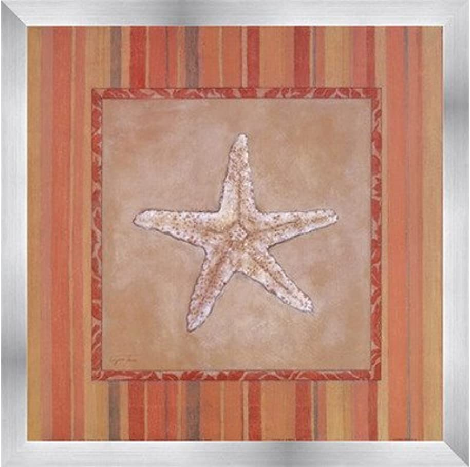 CitrusシェルIII by Eugene Tava – 12 x 12インチ – アートプリントポスター 12 x 12 Inch LE_201308-F9935-12x12