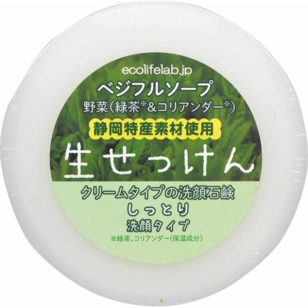 反動自治ビザベジフルソープ 生せっけん(野菜) しっとり洗顔タイプ 100g