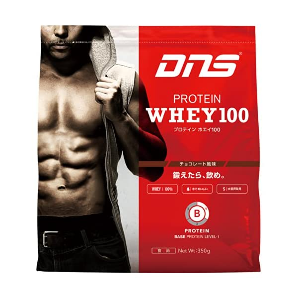DNS プロテインホエイ100 チョコレート風味...の商品画像