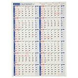 能率 NOLTY 2020年 カレンダー 壁掛け 19 A2 C131 AZ