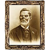 Costumes For All Occasions MR122180 Pappy Fungus 17 X 21 Holograph