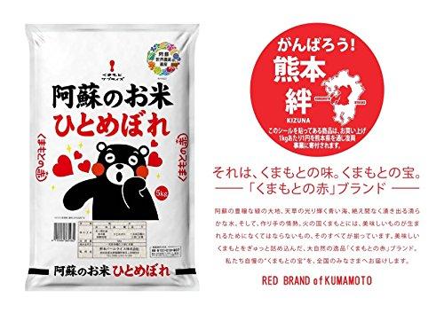 熊本県産 くまもとの赤ブランド 阿蘇ひとめぼれ 5kg 平成30年産