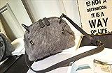 Rush.C バッグ ショルダーバッグ レディース ファー 秋冬物 ラベンダー グレー ブラック 【Rush.Cオリジナルハンカチセット】 B157 (グレー)