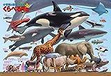 300ピース ジグソーパズル くらべる図鑑[新版] 生物大きさくらべ ラージピース (49x72cm)
