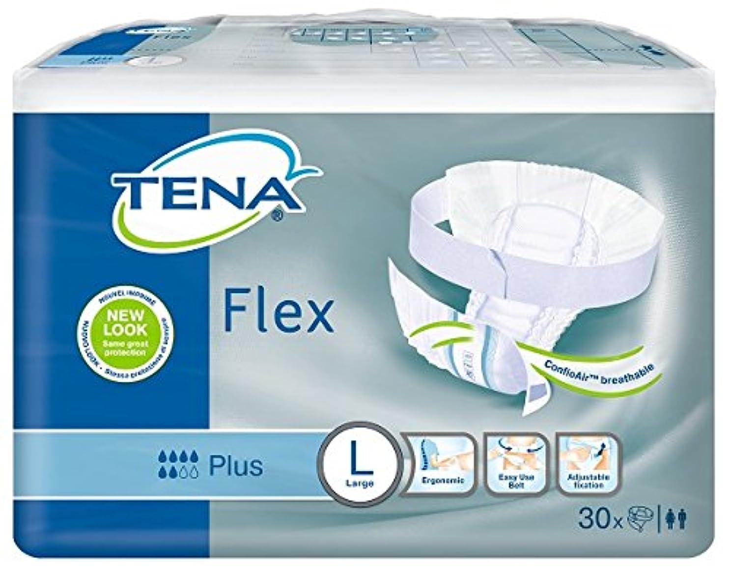 コンピューターゲームをプレイする振り子罪悪感テーナ TENA フレックス プラス Lサイズ 30枚