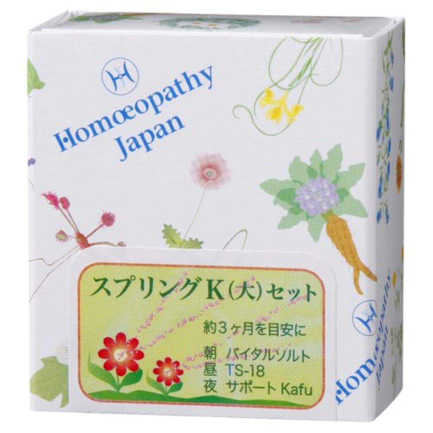 有効な立ち向かう小売ホメオパシージャパンレメディー スプリングK(大)セット