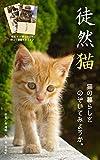 徒然猫: 猫の暮らしをのぞいてみようか
