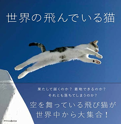 世界の飛んでいる猫の詳細を見る