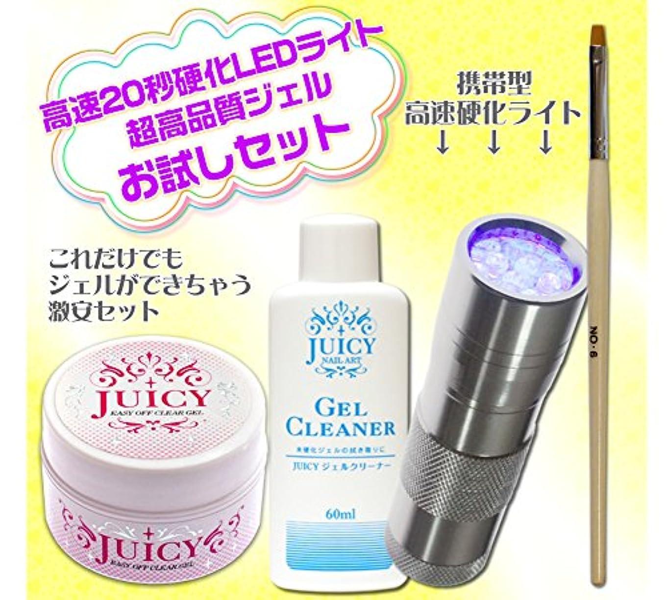 保護吐き出す親愛なジェルネイルキット ペン型LEDライトシルバーと高品質クリアジェルのお試しセット UVライト