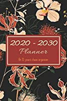 2020 - 2030 Planner: An 11 years chaos organizer