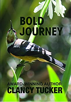 Bold Journey by [Tucker, Clancy]