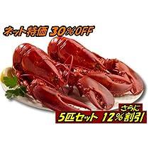 特大活ロブスター(オマール海老[エビ])アメリカ東海岸産 450g 5尾 バーベキューに最適 ぷりっぷり!ジューシー!