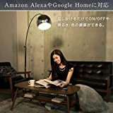 【Amazon Alexa認定 LED電球 】アイリスオーヤマ Alexa対応 LED 電球 調光 E26口金 50W形相当 LDA9L-G/D-75TAAI【Amazon Echo/Google Home対応】 画像