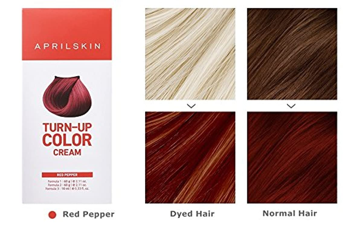 高尚な断片便利さApril Skin Turn Up Color Cream Long lasting Texture Type Hair Dye エイプリルスキン ターンアップカラークリーム長持ちテクスチャタイプヘアダイ (紅)