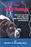 The Big Bang: How you can help your dog cope with thunderstorms and fireworks