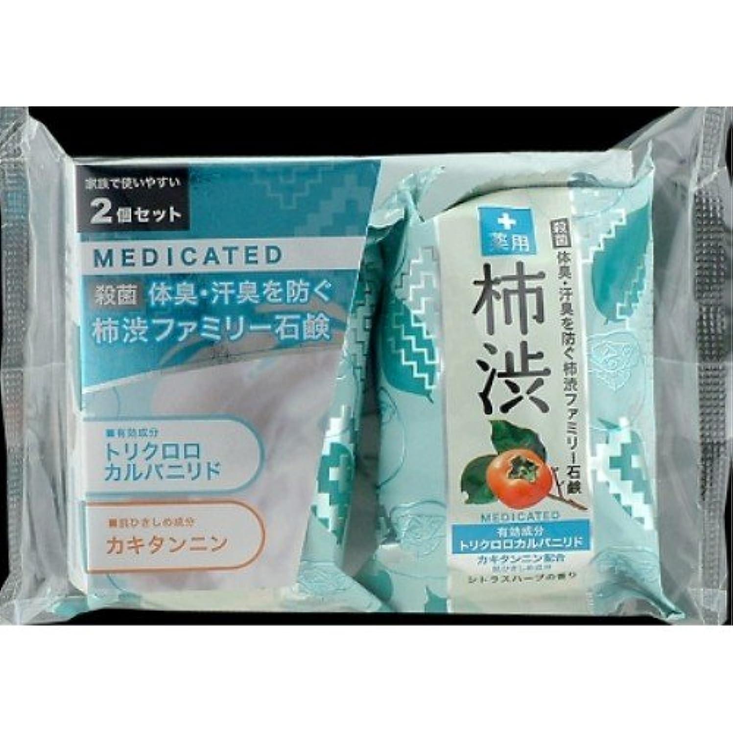 シロナガスクジラ発症乳製品薬用ファミリー 柿渋石けん 2コパック